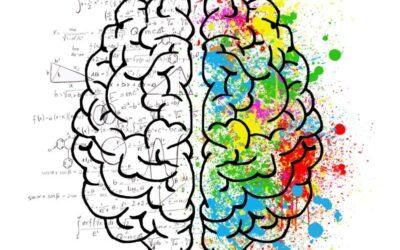 Mit intuitiver Intelligenz zu guten Entscheidungen kommen